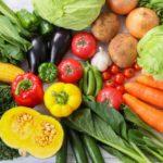 食品安全マネジメントシステムISO22000 規格改定コンサルティング 実施事例 食品包装材製造 栃木県県南
